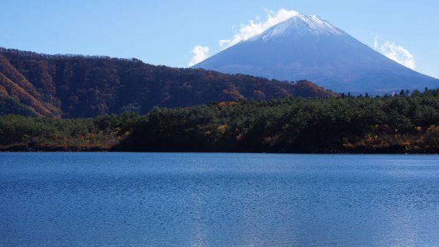 富士山近くへの旅2014年11月