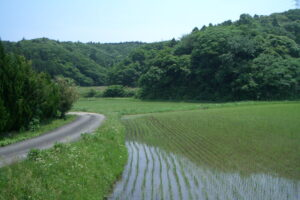 風景2010年