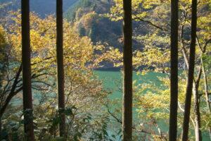 埼玉紅葉2006年11月