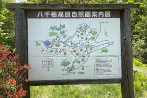 八ヶ岳-八千穂高原2021年